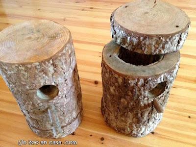 Cajas nido para carraca europea