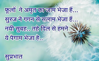 New Hindi Good Morning Shayari