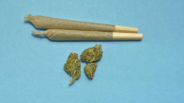 """EE.UU.: Proponen en el Senado """"despenalizar"""" la marihuana a nivel federal"""