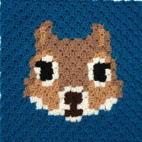 Squirrel C2C Square