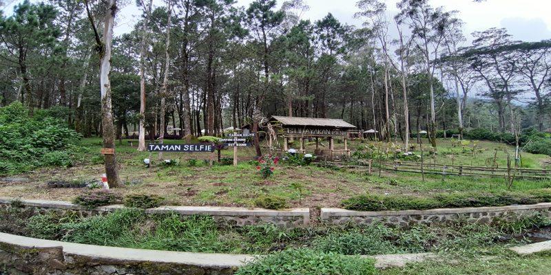 Taman Selfie Kampung Cai Ranca Upas Ciwidey Bandung