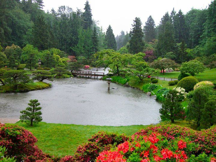 Seattle Japanese Garden: Intensive And Immense Knowledge