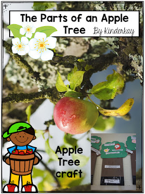 https://www.teacherspayteachers.com/Product/The-Parts-of-the-Apple-Tree-Craft-and-Teacher-Read-Aloud-3415270