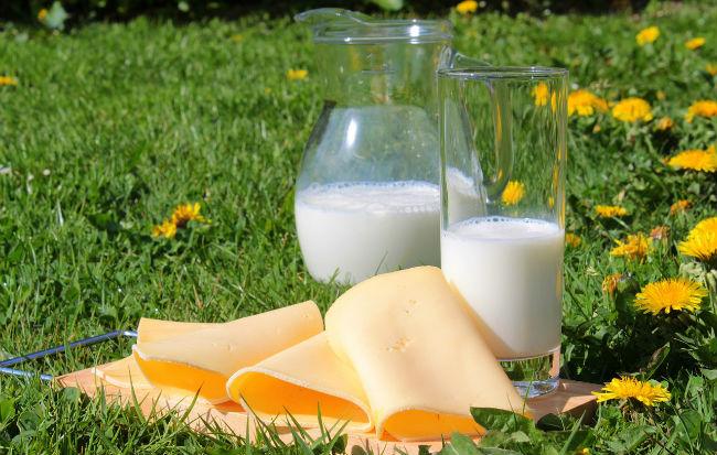 Latte e formaggi biologici