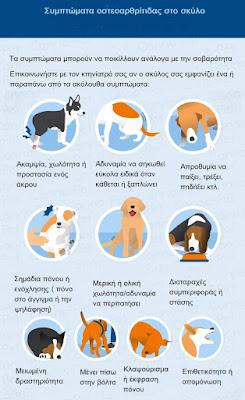 Συμπτώματα οστεοαρθρίτιδας