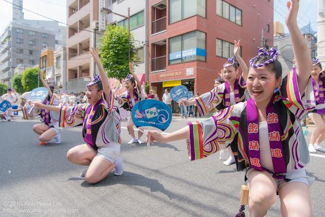 飛鳥連、女法被、マロニエ祭りの写真 その9