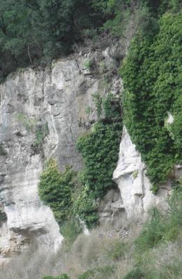 Visage de pierre Calviac, malooka
