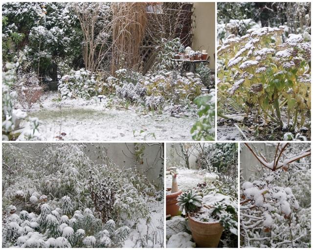 Fotocollage Garten im Schnee