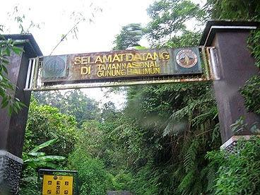 Taman Nasional Gunung Halimun Salak