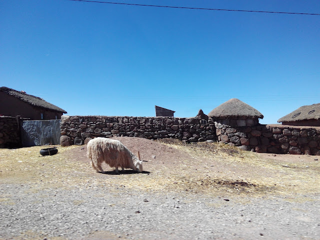 De camino al sitio Arqueológico de Sillustani, Perú