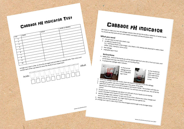 printable red cabbage water pH indicator experiment instruction sheet and results chart
