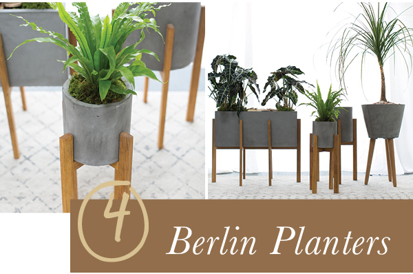 Accent Decor Bestseller: Berlin Planters