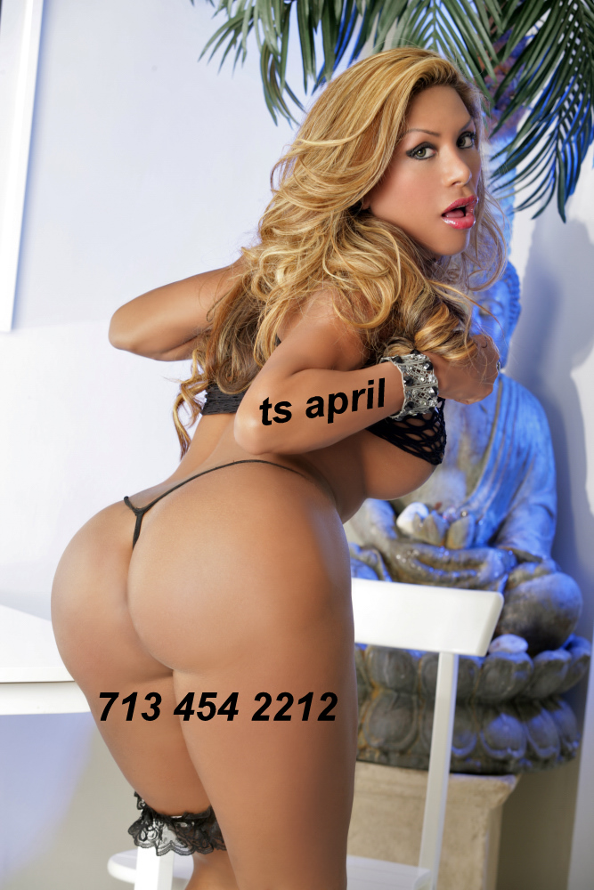 houston dream tgirl april best petite in town ts april