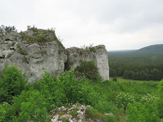 mirowskie