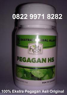 Membedah manfaat khasiat kapsul serbuk PEGAGAN HS Asli HPAI BPOM