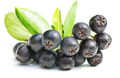 Aronia contains all essential vitamins - C, A, E, B1, B2, B3, B5, B6, B9, and also the minerals like zinc, iron, potassium, calcium, manganese, phosphorus and iodine.