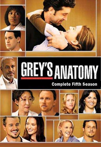 Anatomia de Grey Temporada 5 audio latino