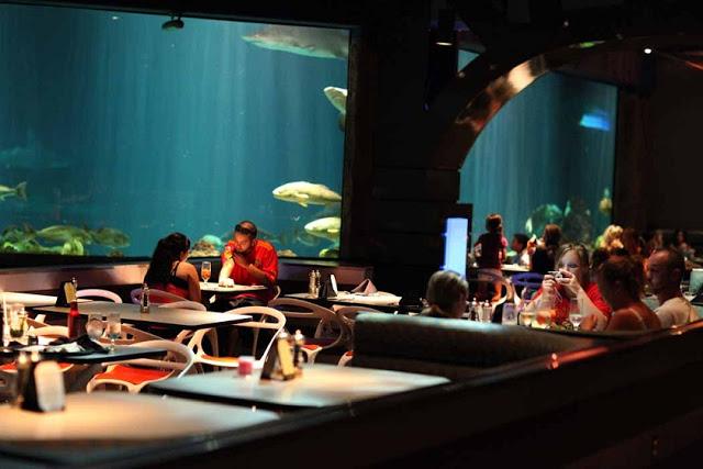 Dónde comer en Sea World