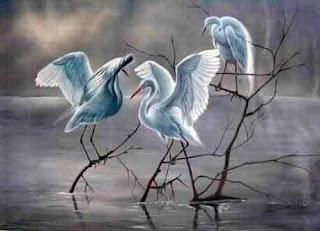 Kehidupan Burung dalam syair cinta