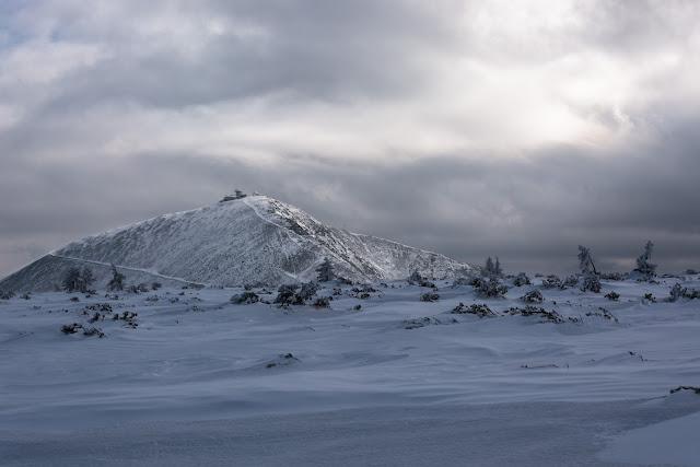 Spacer w zamieci śnieżnej