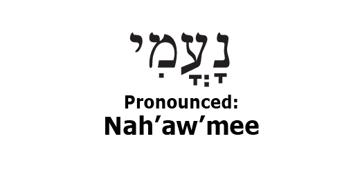 what does the name elimelech mean