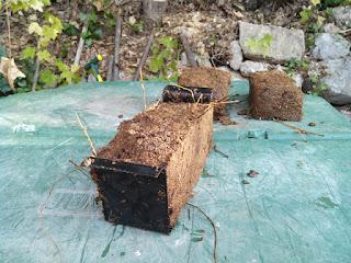 Voici la première brique de fumier formée