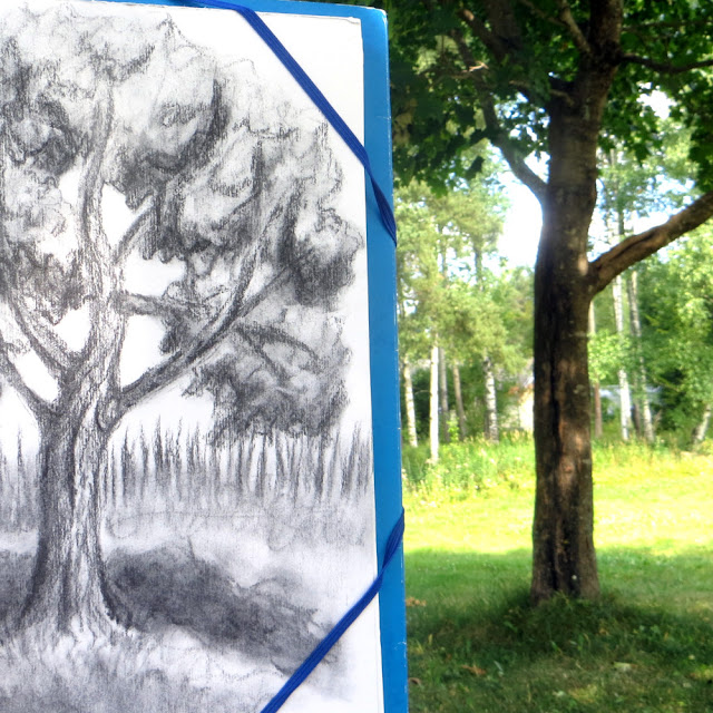 Plein air charcoal tree drawing
