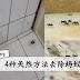 教你最有效4种天然方法去除蚂蚁!家里不再有蚂蚁了~