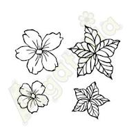 https://sklep.agateria.pl/en/flowers/1101-kwiaty-jabloni.html