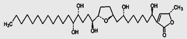 Struktur Senyawa Acetogenins