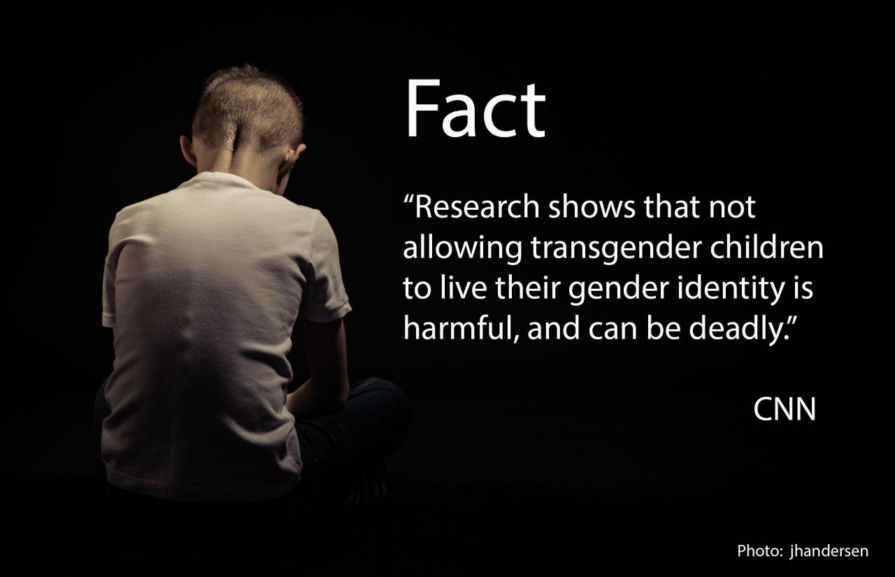 Trans femdom tumblr-4917