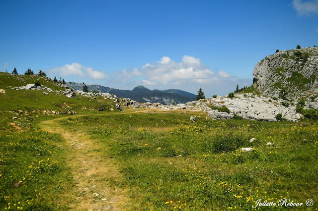 Alpage du Charmant Som, Isère