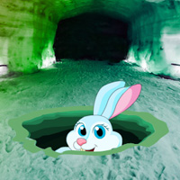 Games2Rule Ice Cave Bunny Rescue