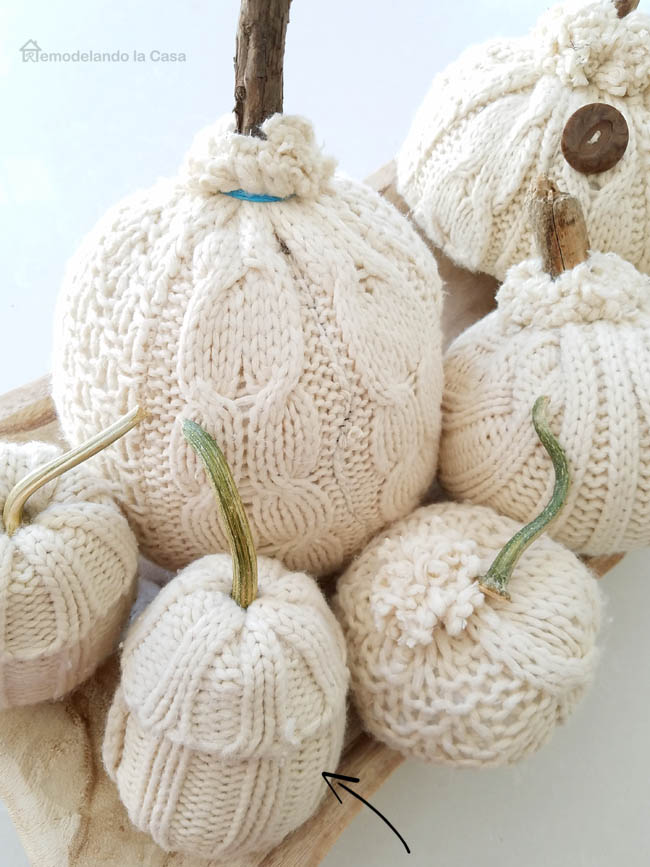 Cutest sweater peak a boo pumpkins with real stems