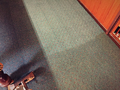 Adelaide professional carpet cleaning