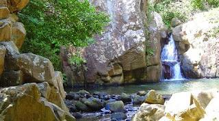 Parque Natural de los Alcornocales, detalle río.