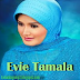 Download Kumpulan Lagu Mp3 Evie Tamala Full Album Terlengkap