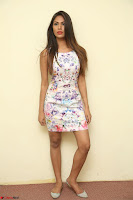 Nishi Ganda stunning cute in Flower Print short dress at Tick Tack Movie Press Meet March 2017 039.JPG