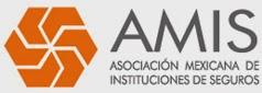 Asociacion Mexicana de Instituciones de Seguros