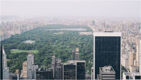 Central Park with the surrounding neighborhood