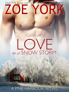 https://www.goodreads.com/book/show/23783582-love-in-a-snow-storm