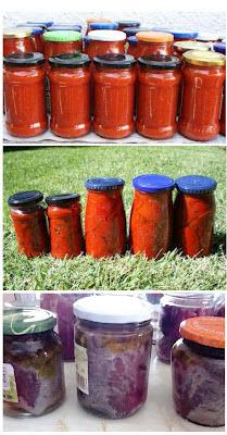 botes caseros de pimientos, tomate y atún Alocados en la cocina