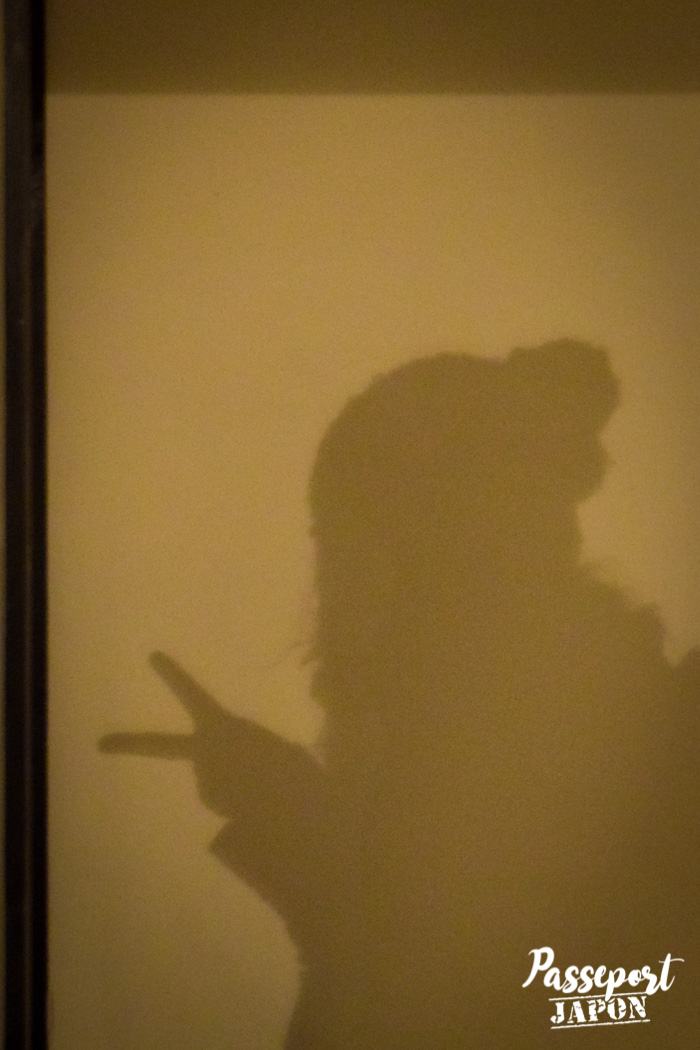 Silhouette en ombre chinoise, Dejima, Nagasaki, Kyushu