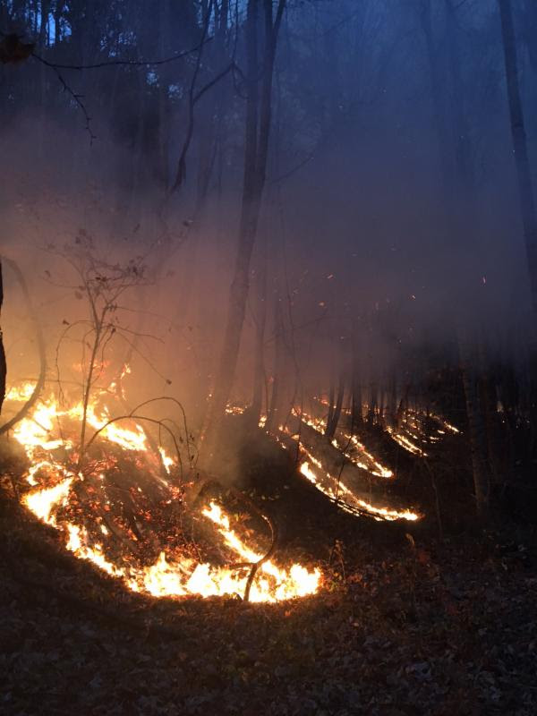 Tactical Burn at the Boteler Fire to Protect Homes