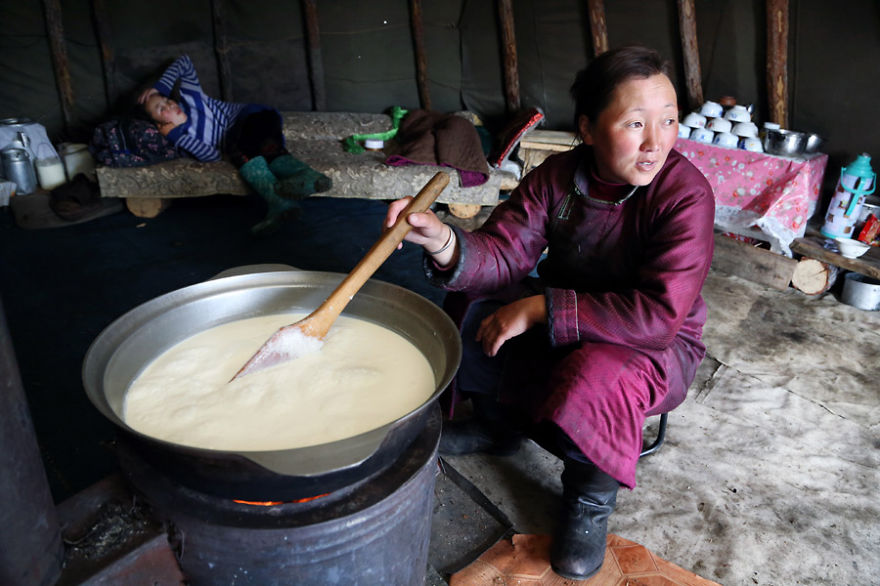 Bolorma is boiling milk to make cheese that the family needs to feed themselves - Meet The Tsaatan Nomads In Mongolia Who Live Like No One Else