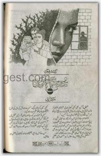 Mohabbat humsafar meri novel by Rashida Riffat