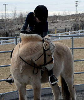 Clicker training a horse