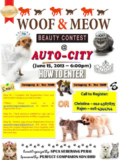 WOOF & MEOW BEAUTY CONTEST