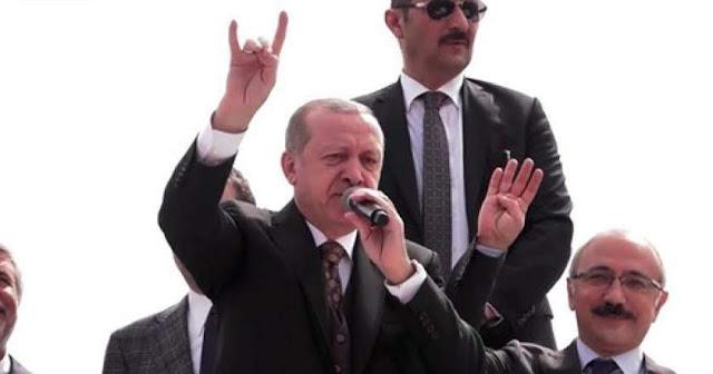 Alemania prohibirá el saludo fascista turco de Lobos grises