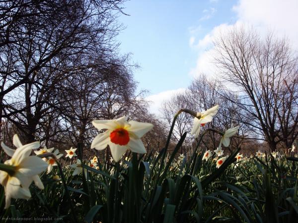 Primavera en Londres